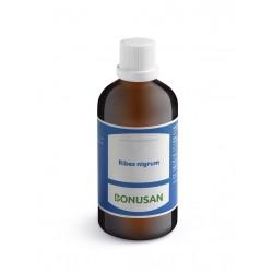 Bonusan Ribes nigrum - 100 ml